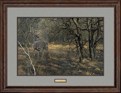Monarch-Whitetail Deer Art Collection