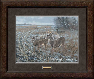 <i>Frosted Morning&mdash;Whitetail Deer</i>
