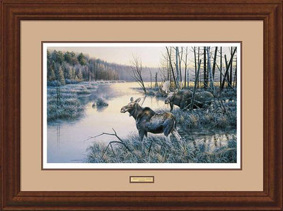 Frosty Sojourn-Moose Art Collection