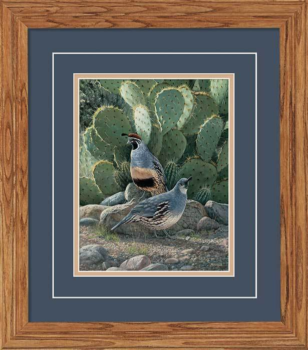 Cactus Shadows—gambels Quail Gna Deluxe Framed Print