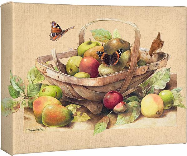 <I>Garden Trug With Apples</i> Gallery Wrapped Canvas