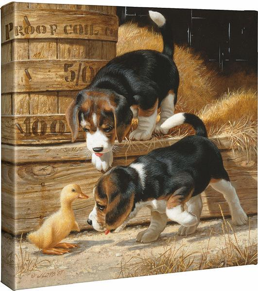 <I>Getting Acquanited&mdash;beagles</i> Gallery Wrapped Canvas