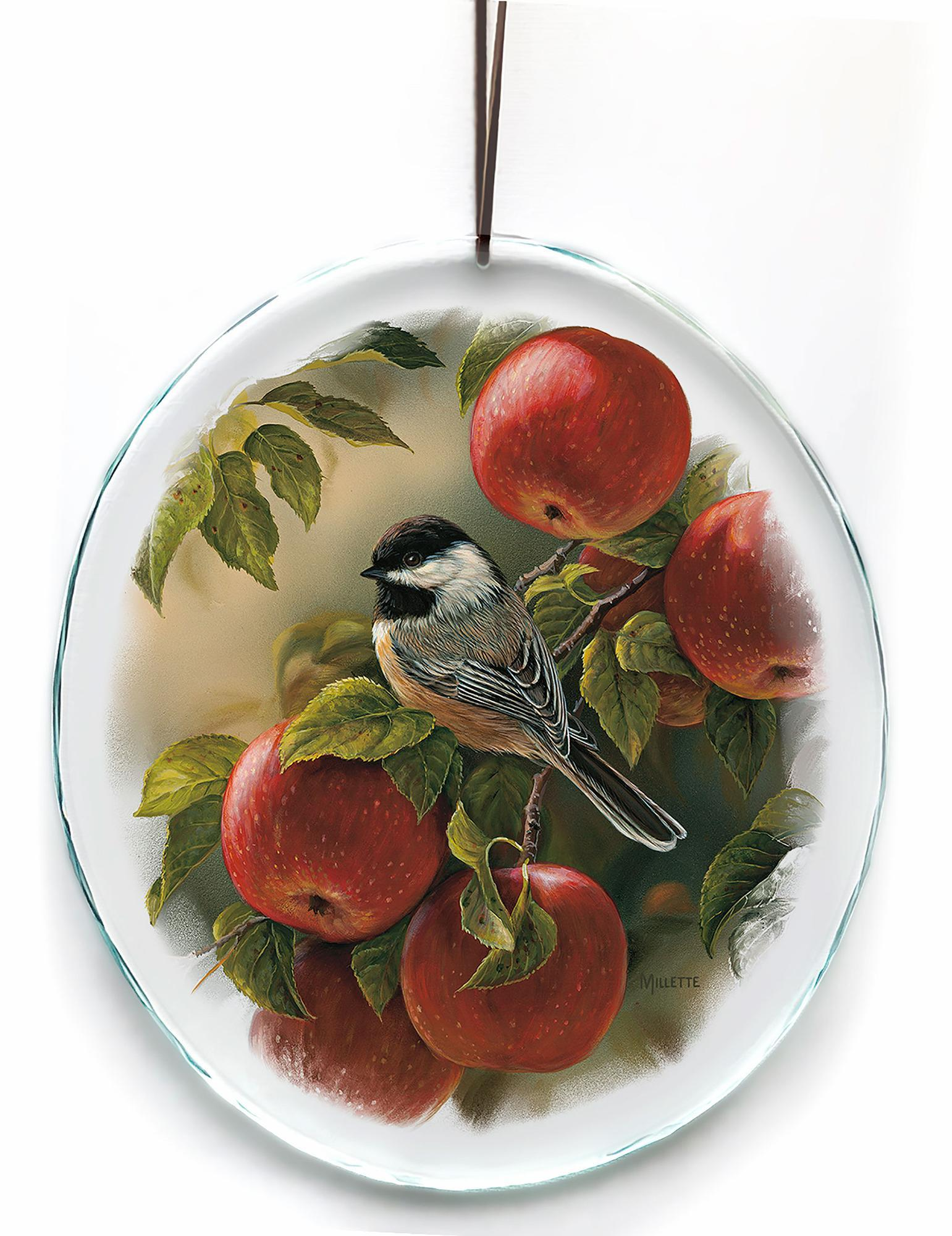 Orchard Visitor—Chickadee.