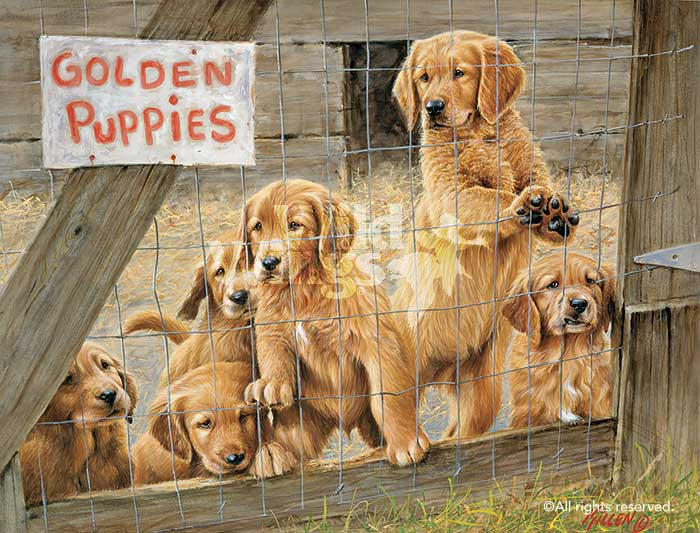 Golden Daze-Golden Retriever Puppies Art Collection