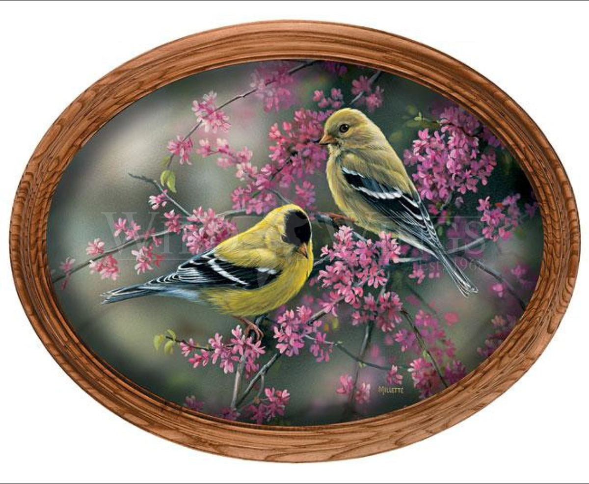 Goldfinch & Redbud.