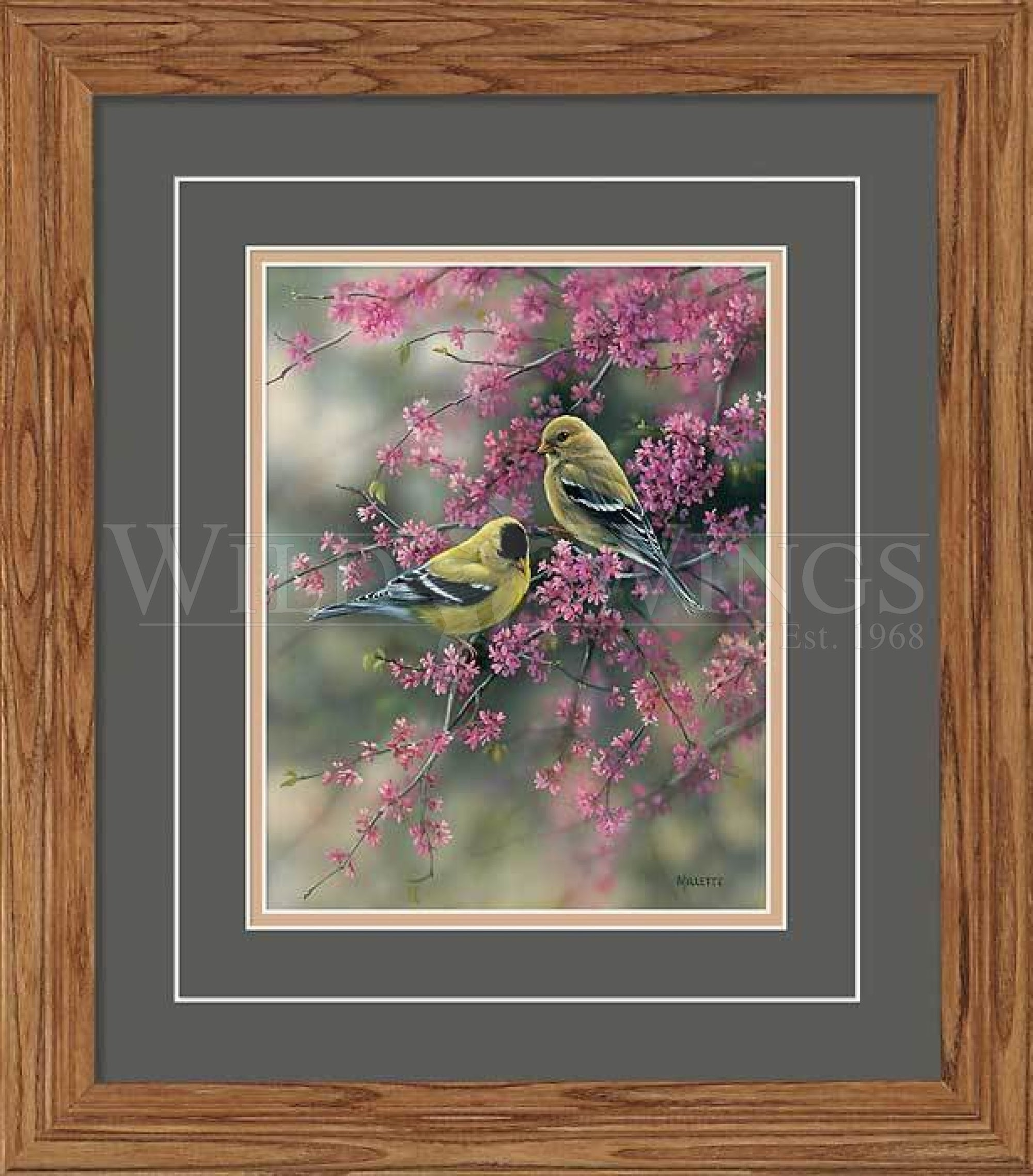 <I>Goldfinch & Redbud</i> Gna Deluxe Framed Print<Br/>18.5H X 16.25W Art Collection