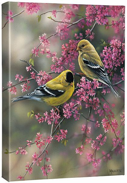 <I>Goldfinch & Redbud</i> Gallery Wrapped Canvas