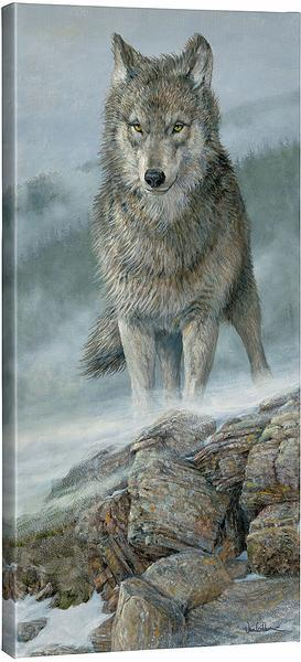 <I>Gray Wolf</i> Gallery Wrapped Canvas