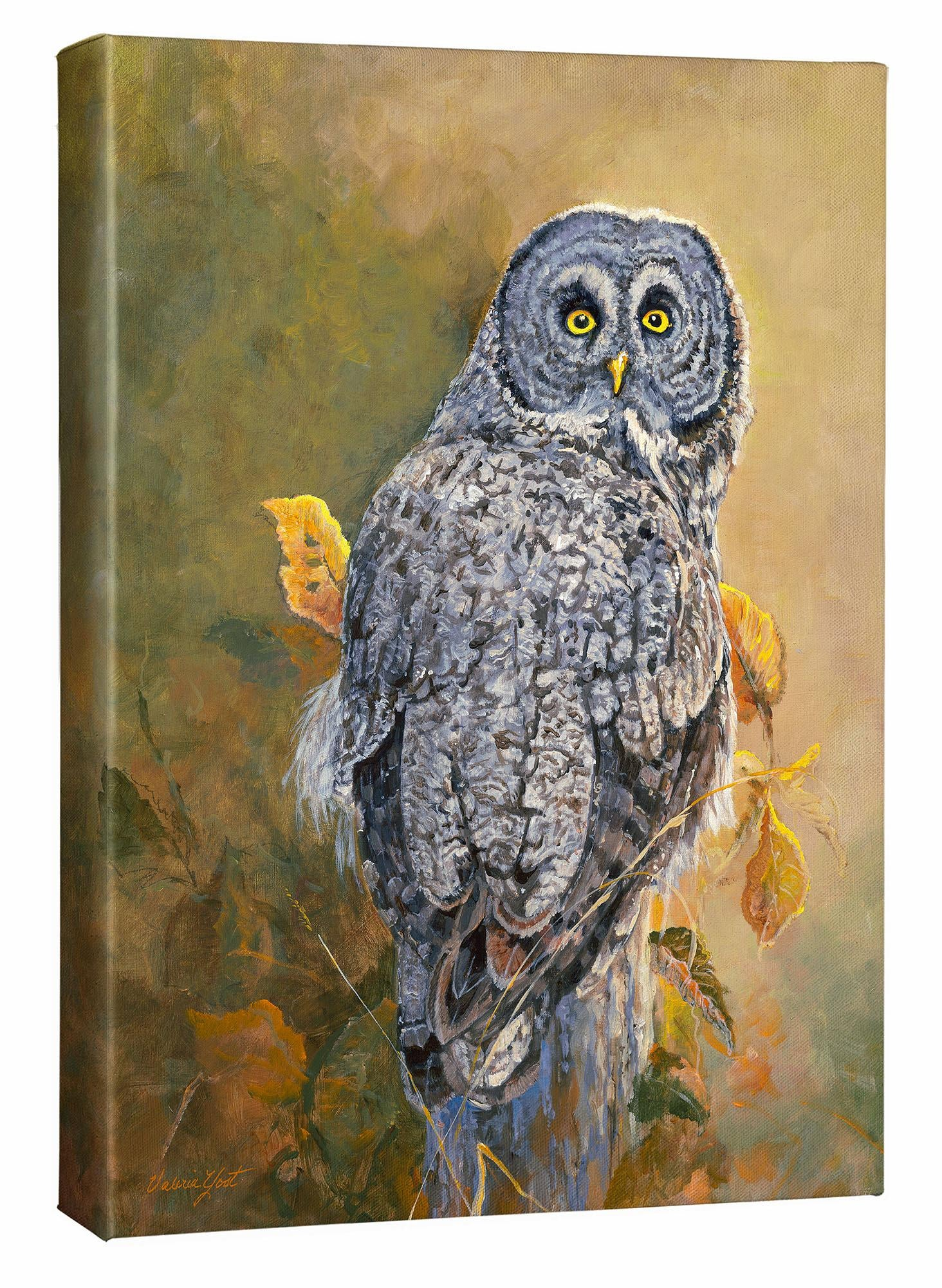 Great Gray Owl Art Collection