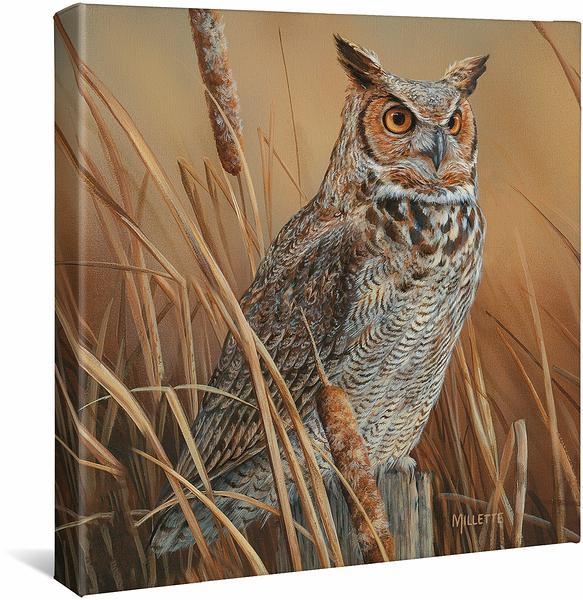 <I>Great Horned Owl</i> Gallery Wrapped Canvas