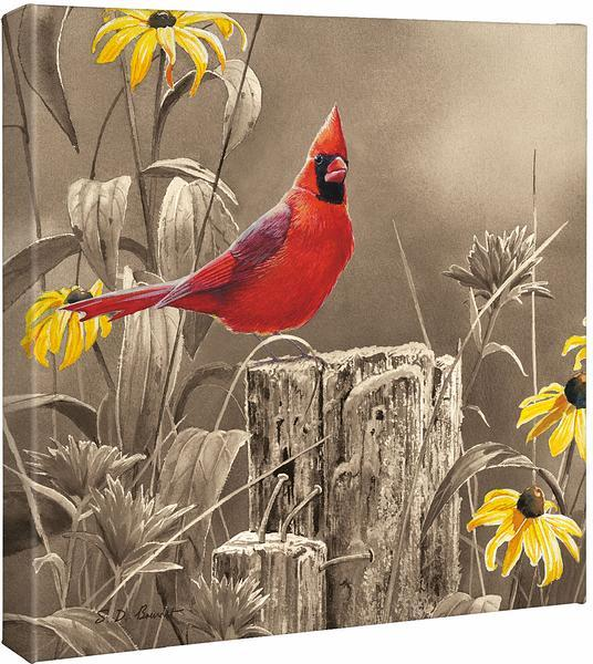 <I>Greeting The New Day&mdash;cardinal</i> Gallery Wrapped Canvas