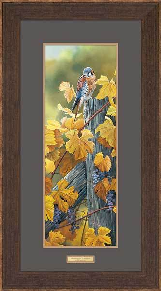 <I>Harvest Gold&mdash;kestrel</i> Framed Limited Edition Print<Br/>34H X 18.5W Art Collection