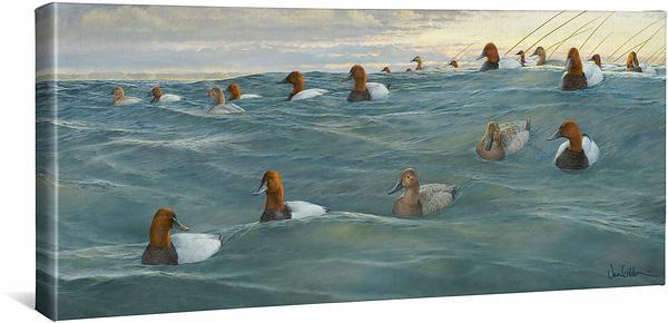 <I>Heading Offshore&mdash;canvasbacks</i> Gallery Wrapped Canvas