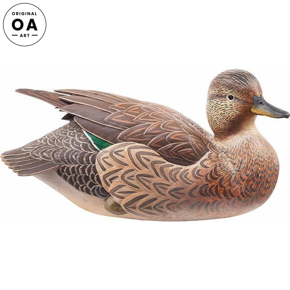 Mr. & Mrs. Green—Green-winged Teal Hen.