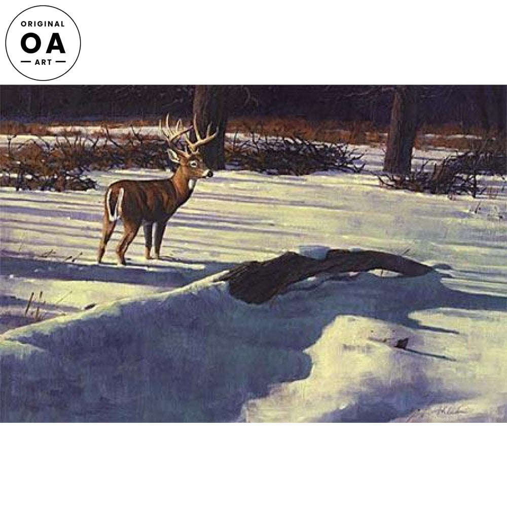 <I>Early Snow&mdash;whitetail Deer: Hilscher</i> Original Artwork Oil Painting