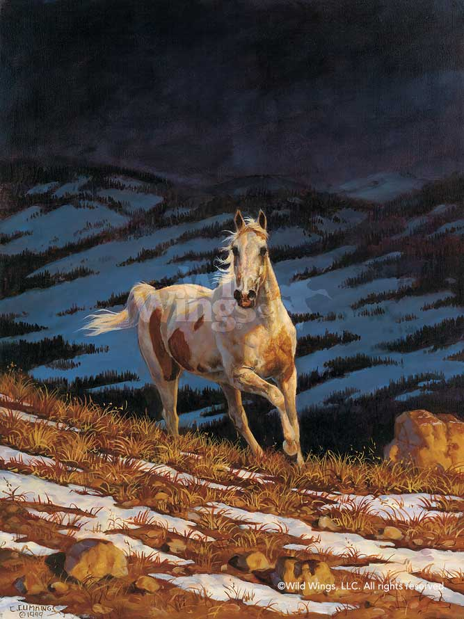 Approaching Storm Stallion-Horse Art Collection