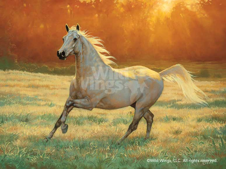 <i>Arabian Gray&mdash;Horse</i>