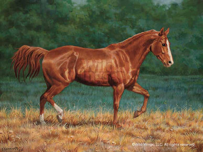 Quarter Horse-Sorrel Art Collection