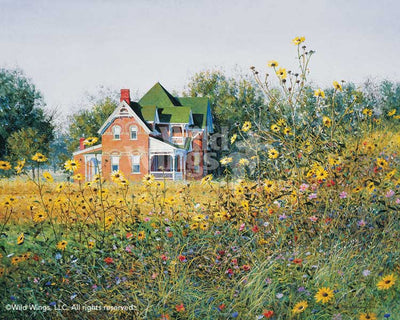 Victorian in the Meadow Art Collection