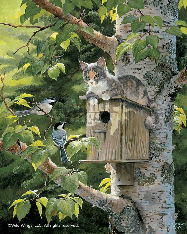 Housesitting-Cat & Birds Limited Edition Print