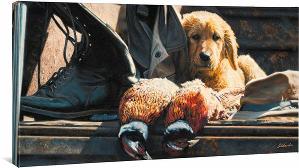 Hunting Equipment Used & Brand New—Golden Retriever.