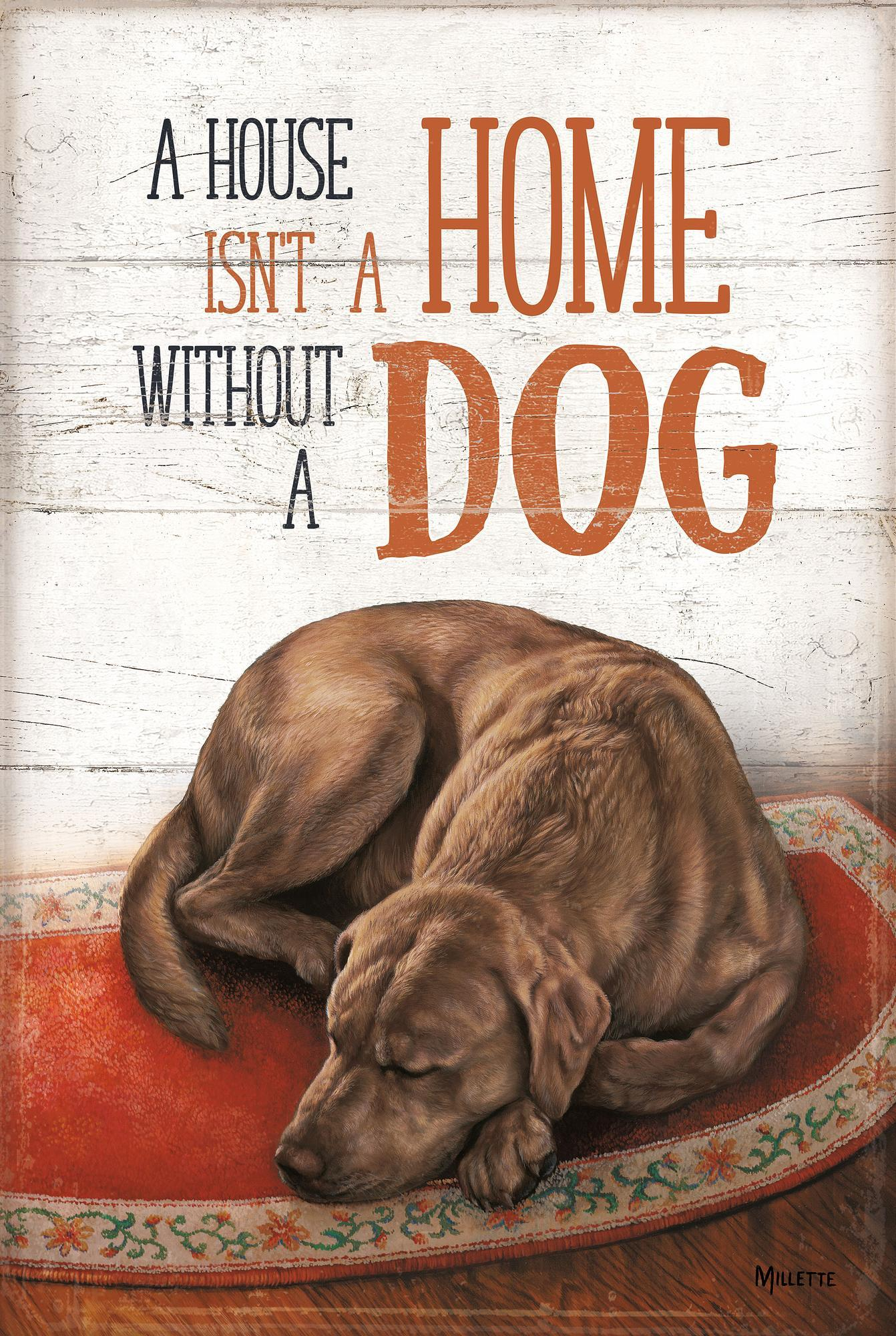 A House isn't a Home Without a Dog—Chocolate Lab.