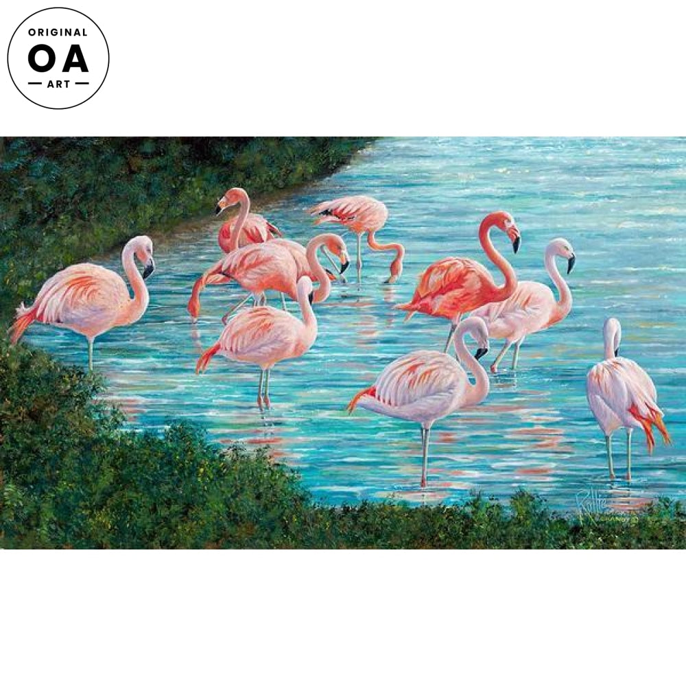 Knee Deep—Flamingos.