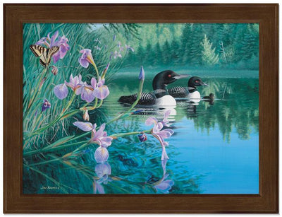 <I>Iris Cove&mdash;loons</i> Framed Studio Canvas<Br/>22H X 29W Art Collection