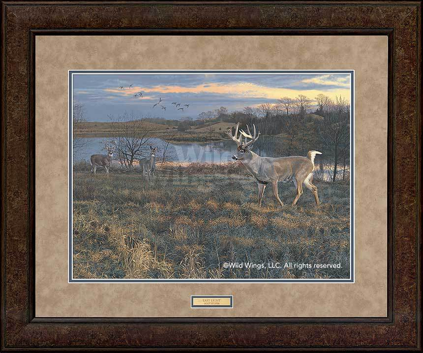 <I>Last Light&mdash;wtd</i> Gna Premium+ Framed Print