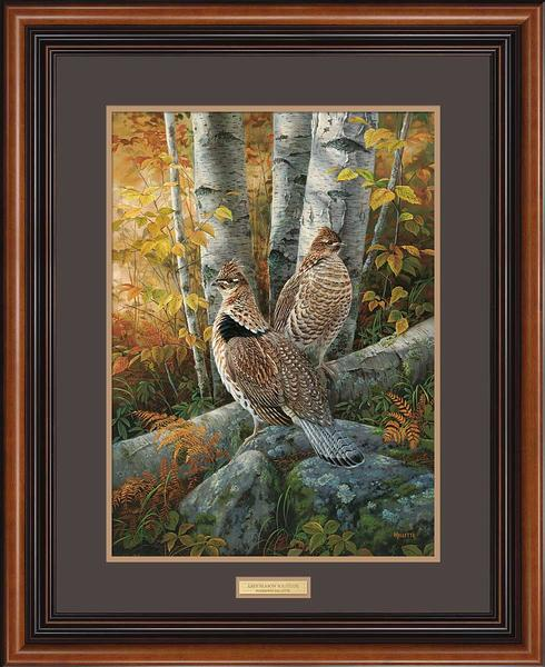 Late Season Solitude—Ruffed Grouse.