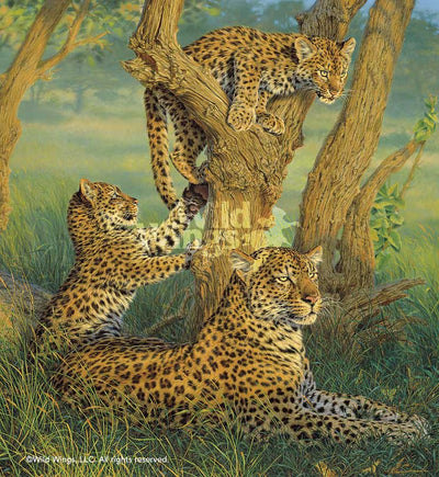 Family Outing—Leopards.