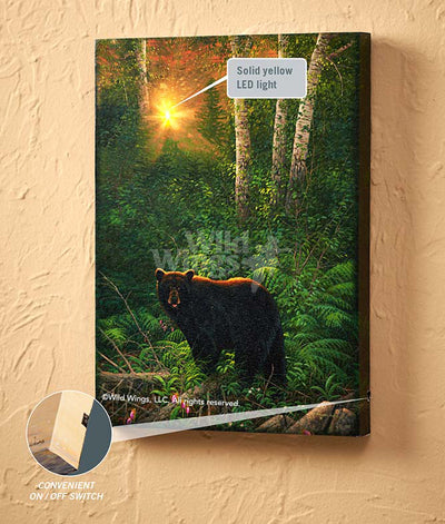 Sunset Surprise-Bear Art Collection