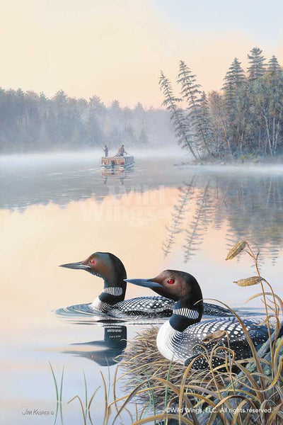Seasons of the Lake; Spring—Loons.