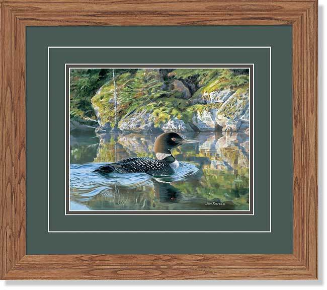Against The Rocks&mdash;loon Gna Deluxe Framed Print<Br/>16.5H X 18.5W Art Collection