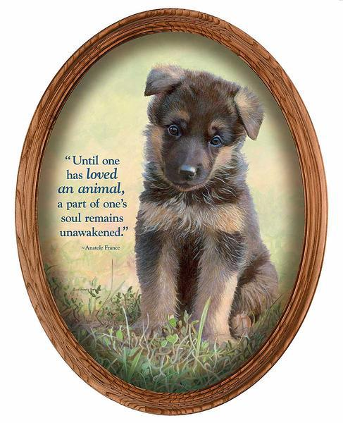Lucky Enough—german Shepherd Framed Canvas Oval