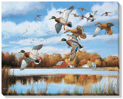 Opening Day-Mallards Art Collection