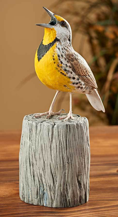 Meadowlark—Bird Wood.