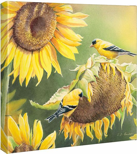 <I>Midas Touch&mdash;goldfinches</i> Gallery Wrapped Canvas