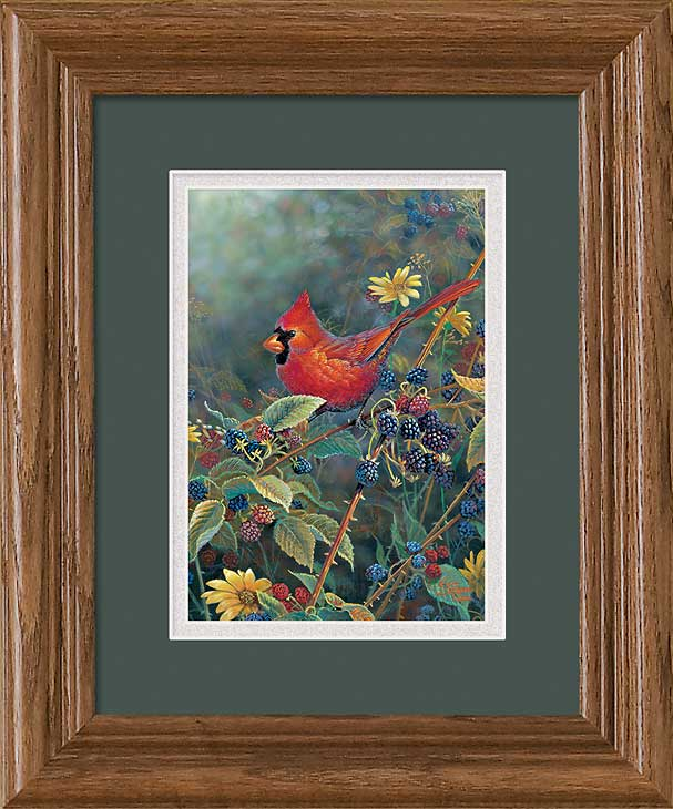 Songbirds Art Collection