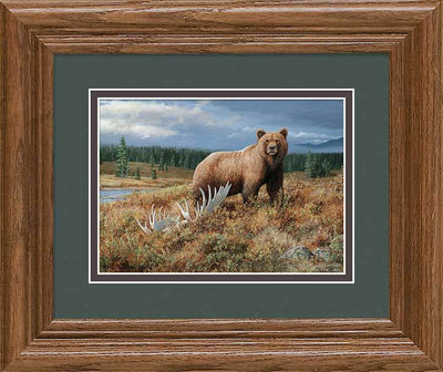 <I>Autumn Splendor&mdash;grizzly</i> Gna Mini Framed Print<Br/>10.5H X 12.5W Art Collection