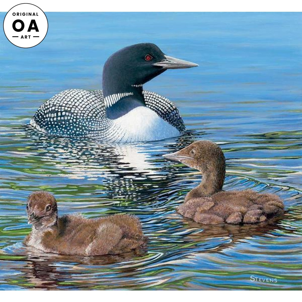 Mother Knows Best—Loons.