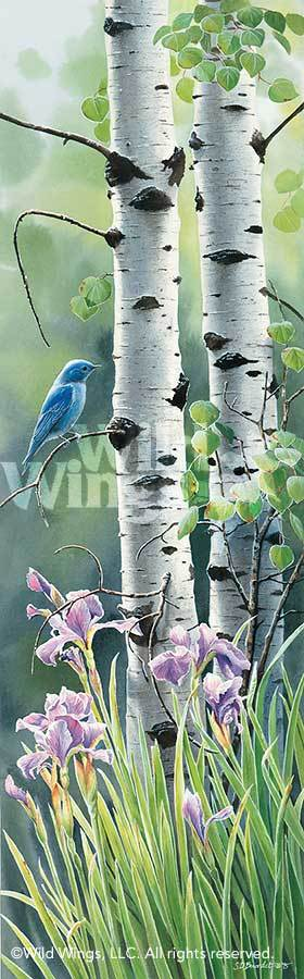 <i>Mountain Memories&mdash;Bluebird</i>