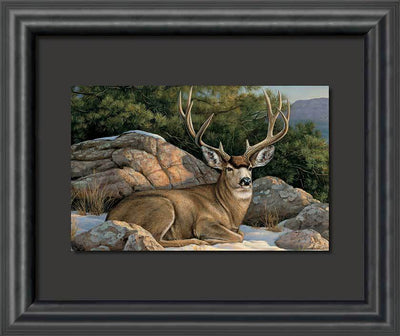 <I>Rocky Outcrop&mdash;mule Deer</i> Float Mount Print<Br/>23H X 28W Art Collection