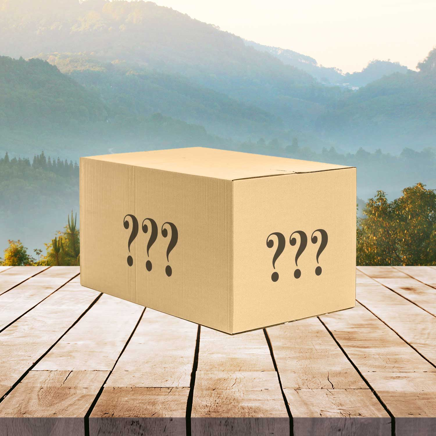 Mystery Box Premium Collectibles #1