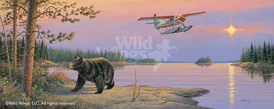 North Country-Black Bear Art Collection