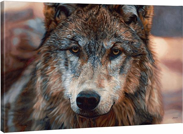<I>Northern Gaze&mdash;wolf</i> Gallery Wrapped Canvas
