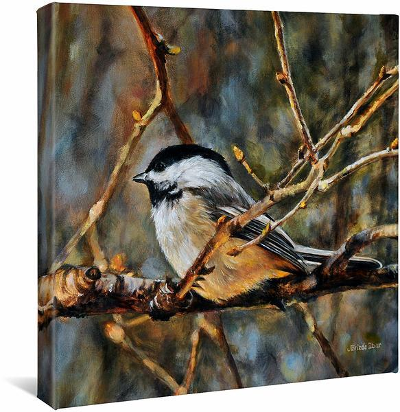 <I>November Curtain&mdash;chickadee</i> Gallery Wrapped Canvas
