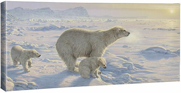 <I>On The Edge&mdash;polar Bears</i> Gallery Wrapped Canvas