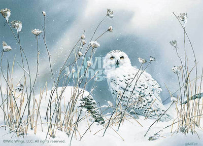 <I>On The North Wind&mdash;snowy Owl</i> Artist Proof Print<Br/>18H X 25W Art Collection