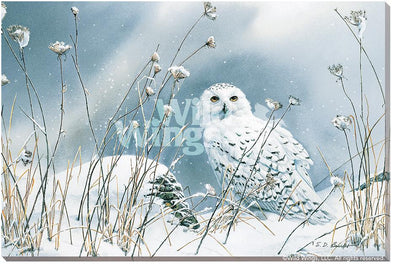 <I>On The North Wind&mdash;snowy Owl</i> Wrapped Canvas<Br/>36H X 24W Art Collection